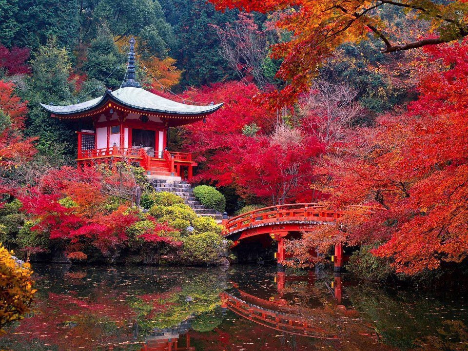 Daigo-Ji-Temple-in-Autumn-Kyoto-Japan