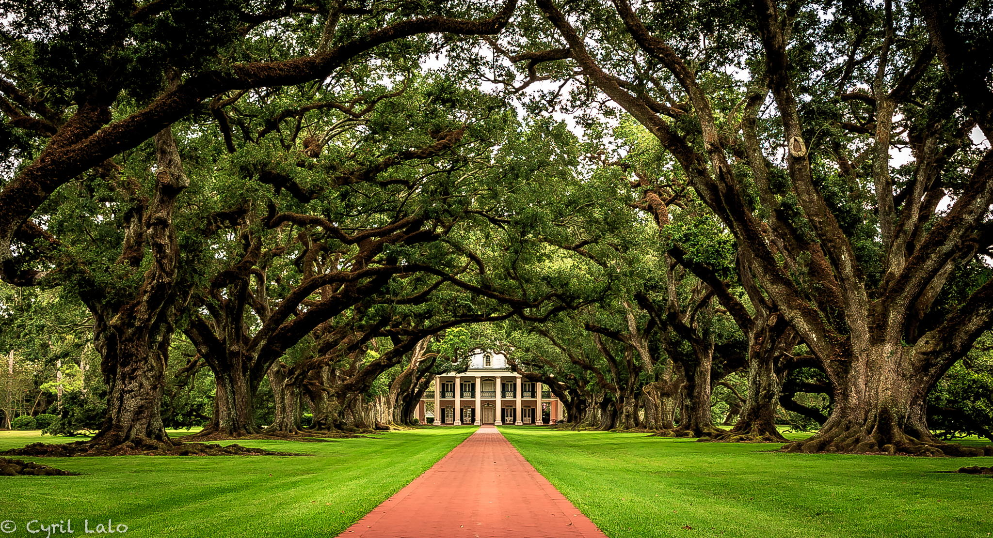 Oak Alley Plantation, New Orleans, Louisiana